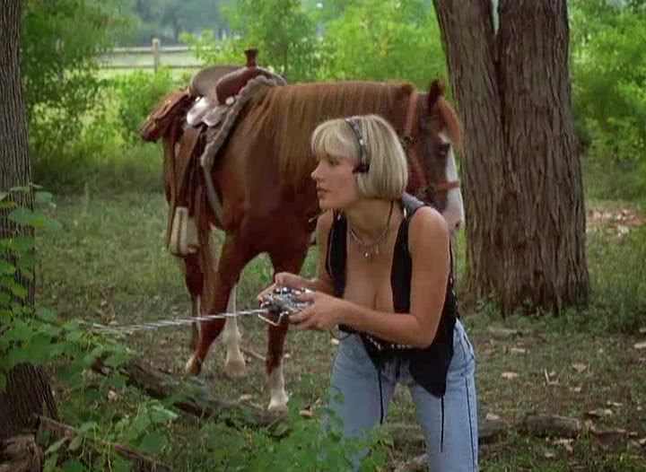 Single Resumable Download Link For Hollywood Movie The Dallas Connection (1994) In  Dual Audio