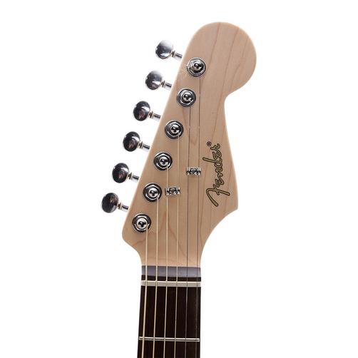 dan Fender Standard Stratocaster