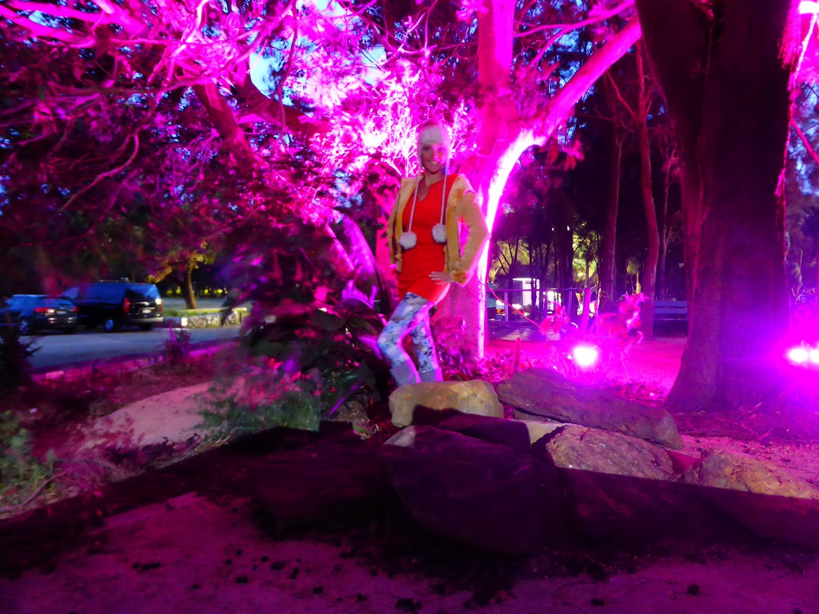 Warringah Art Prize Openings Night   Green with Envy