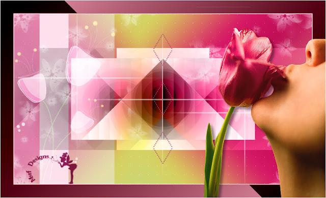 Tulip new