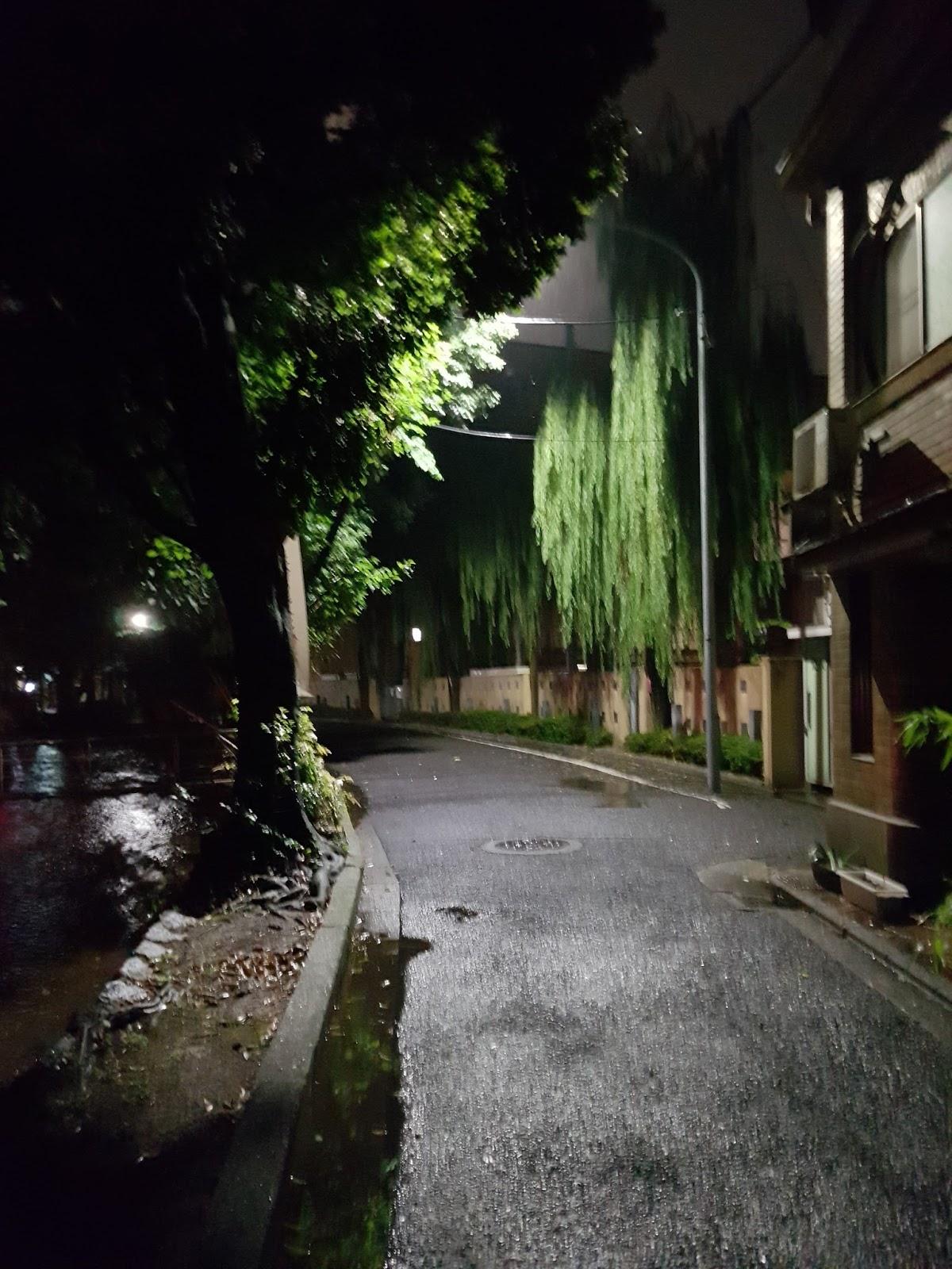 Kyoto canal at night