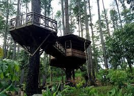 Taman Hutan Raya Pocut Meurah Intan - Janoopedia