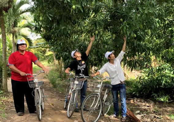 Hái Trái cây cồn Mỹ Phước
