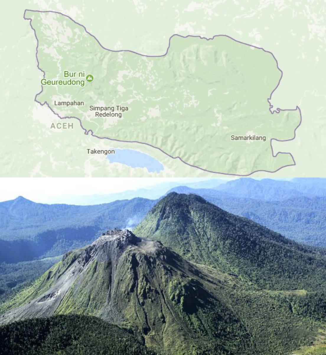 Apotik Yang Jual Jelly Gamat Di Kabupaten Bener Meriah Toko Qnc Melayani Konsumen Tinggal Pada Daftar Daerah Berikut Melingkupi Selurunya Termasuk
