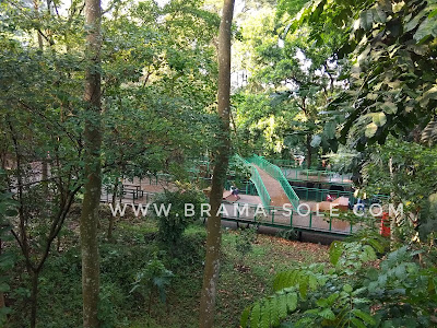 panjang forest walk  track hutan kota baksil