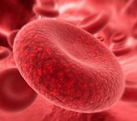 HEMOSTASIA-VETERINARIA-PDF-hemacia