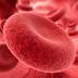 [PDF] Hemostasia Veterinária
