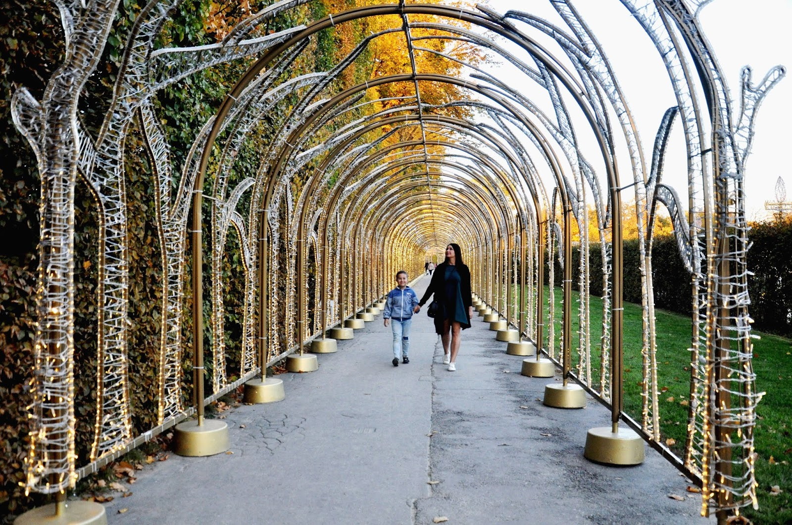 Królewski Ogród światła W Wilanowie Czy Warto Go Odwiedzić