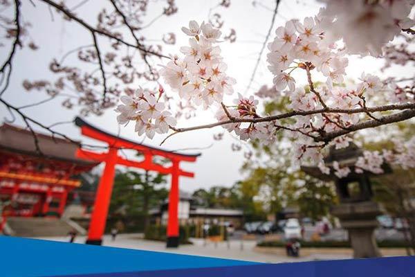 Paket Wisata Halal Jepang Bersama ESQ Tours & Travel Asep Lukman 0821-1177-8165