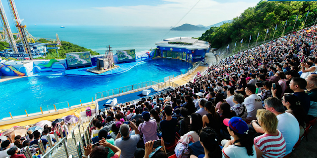 Traveling to Hong Kong? Don't Forget to Visit Ocean Park