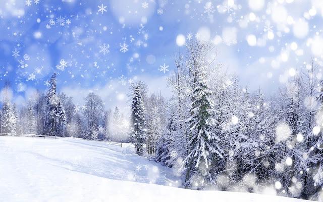 Foto van een witte kerst met sneeuw