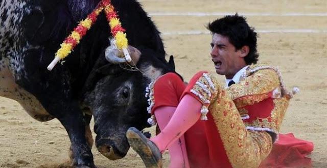 Muere torero español Víctor Barrio (29) por cornada (Video)