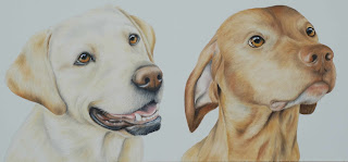 vizla and labrador pet portrait oil on canvas