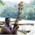 หมองู..ชาวอินเดียสุดบ้าคลั่ง!! บุกจับ งูจงอางที่ตัวใหญ่สุดในประเทศ ที่ชาวบ้านต่างเคารพนับถือ งานนี้เจอดี..!! (ชมคลิป)