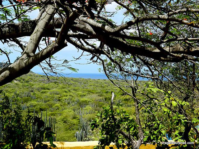 Fazenda Knip, onde eclodiu a revolta de escravos de Curaçao