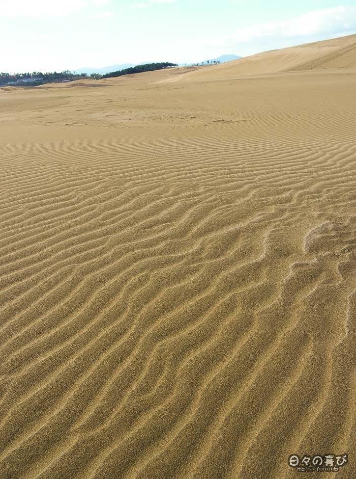 dunes et motif de vague dans le sable au premier plan