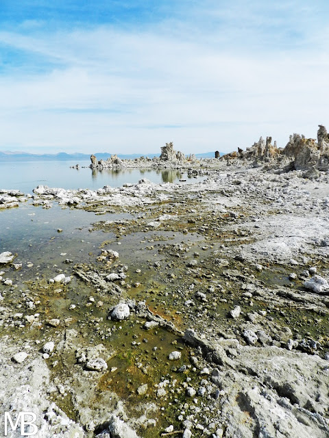mono lake california lee vining