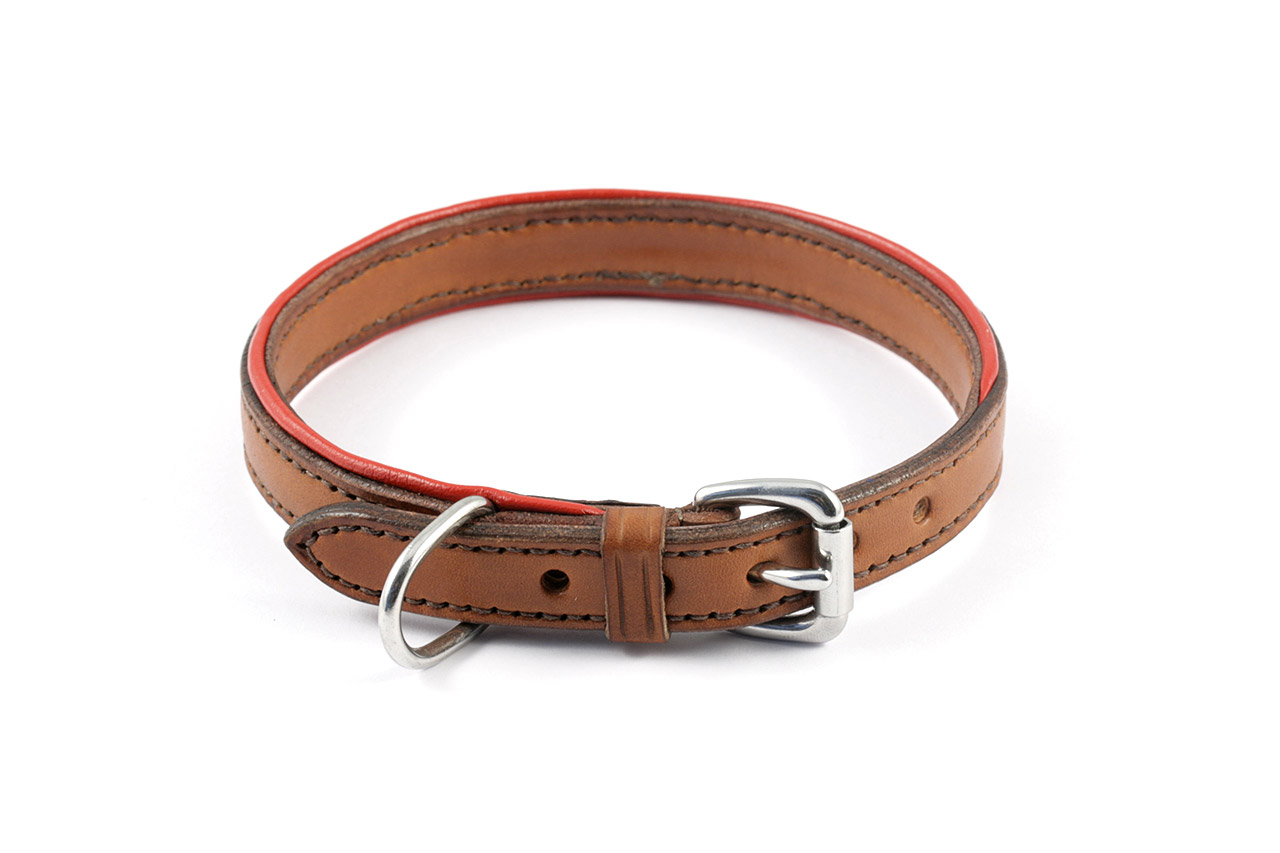 Best Dog Collars Etsy
