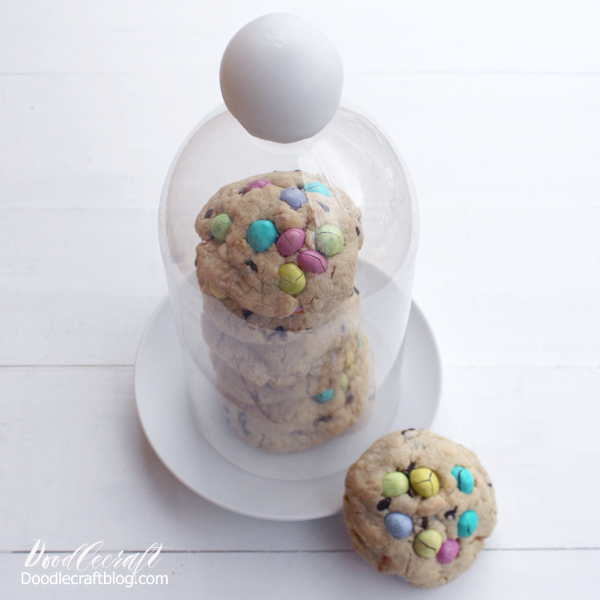 DIY Cloche Cover  Make a fancy cookie cover with something you probably already have! Click for more details!