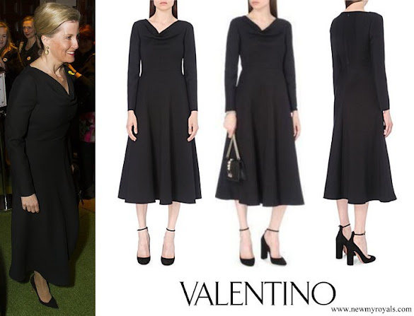 Countess Sophie wore VALENTINO Draped Cowl-neck Wool and Silk Blend Dress
