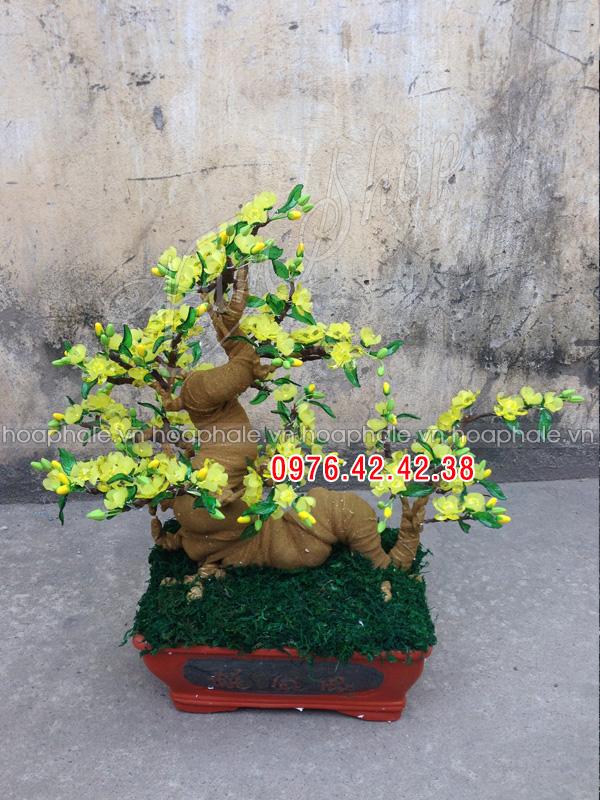Góc bonsai cay hoa mai the rong tai Thach Thuong