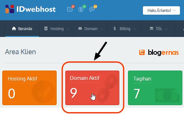 Cara Mengetahui Domain sudah Aktif atau Belum