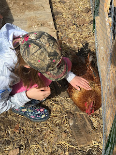 homesteading life