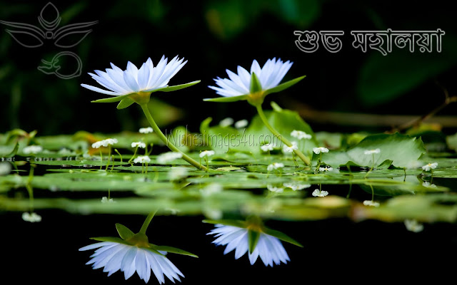 Subho Mohalaya Full HD Wallpaper 2018