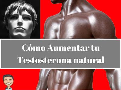 Como aumentar la testosterona naturalmente