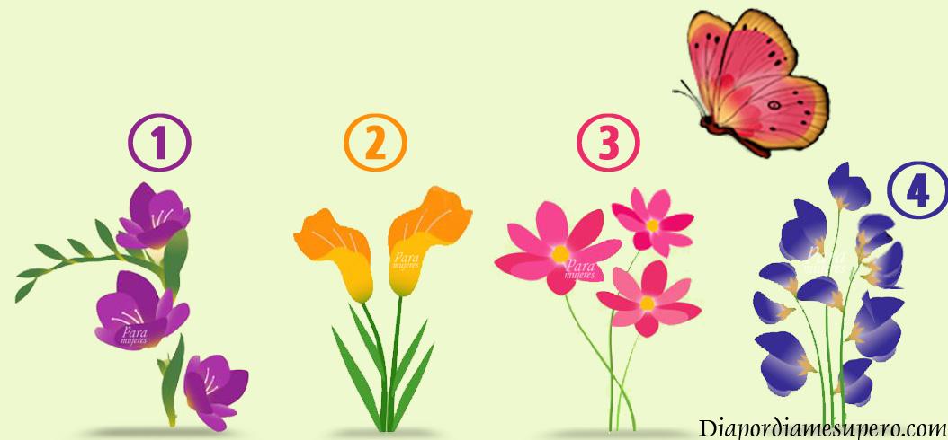 Test: ¿En qué flor la mariposa va a posarse?