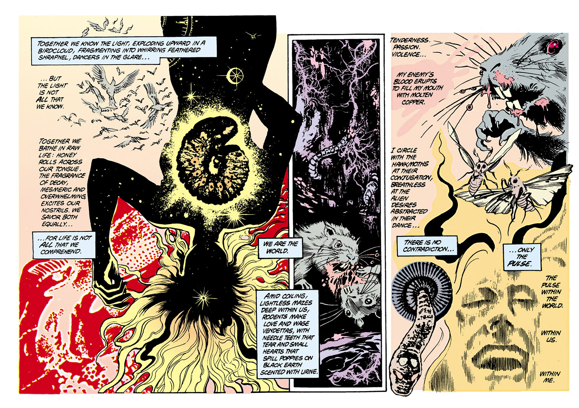 Swamp Thing (1982) Issue #34 #42 - English 15