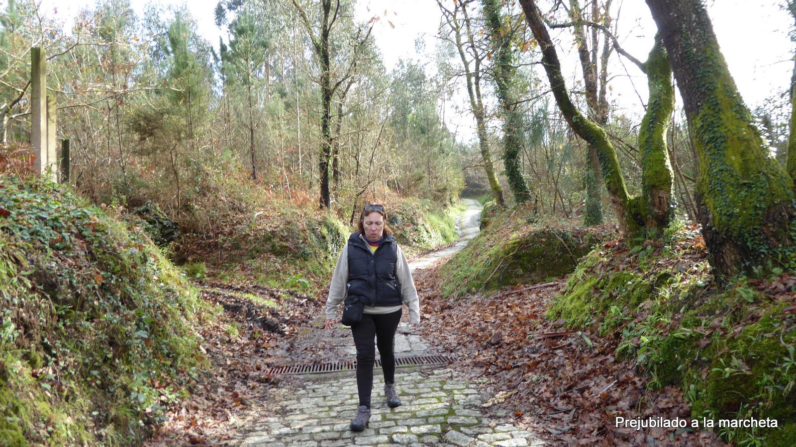 Prejubilado a la marcheta camino portugu s a santiago desde o porri o - Pension jardin padron ...