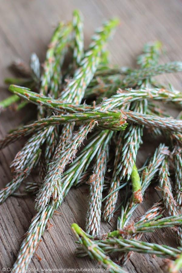 naturalny syrop z młodych pędów sosny
