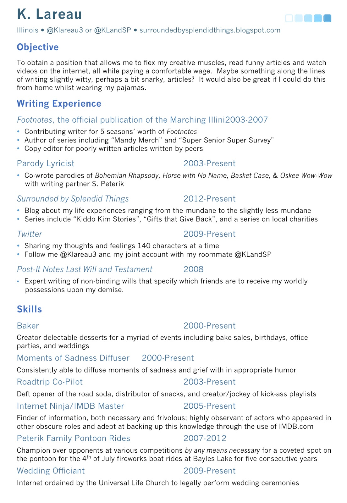 splendid things  fake resume  splendid