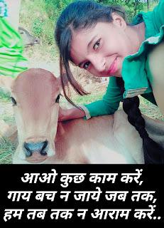 गौ माता स्लोगन - गौ माता स्टेटस - हिंदी में पढ़ें - gau mata status in hindi