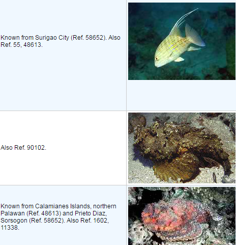 List of Dangerous Fish in the Philippines