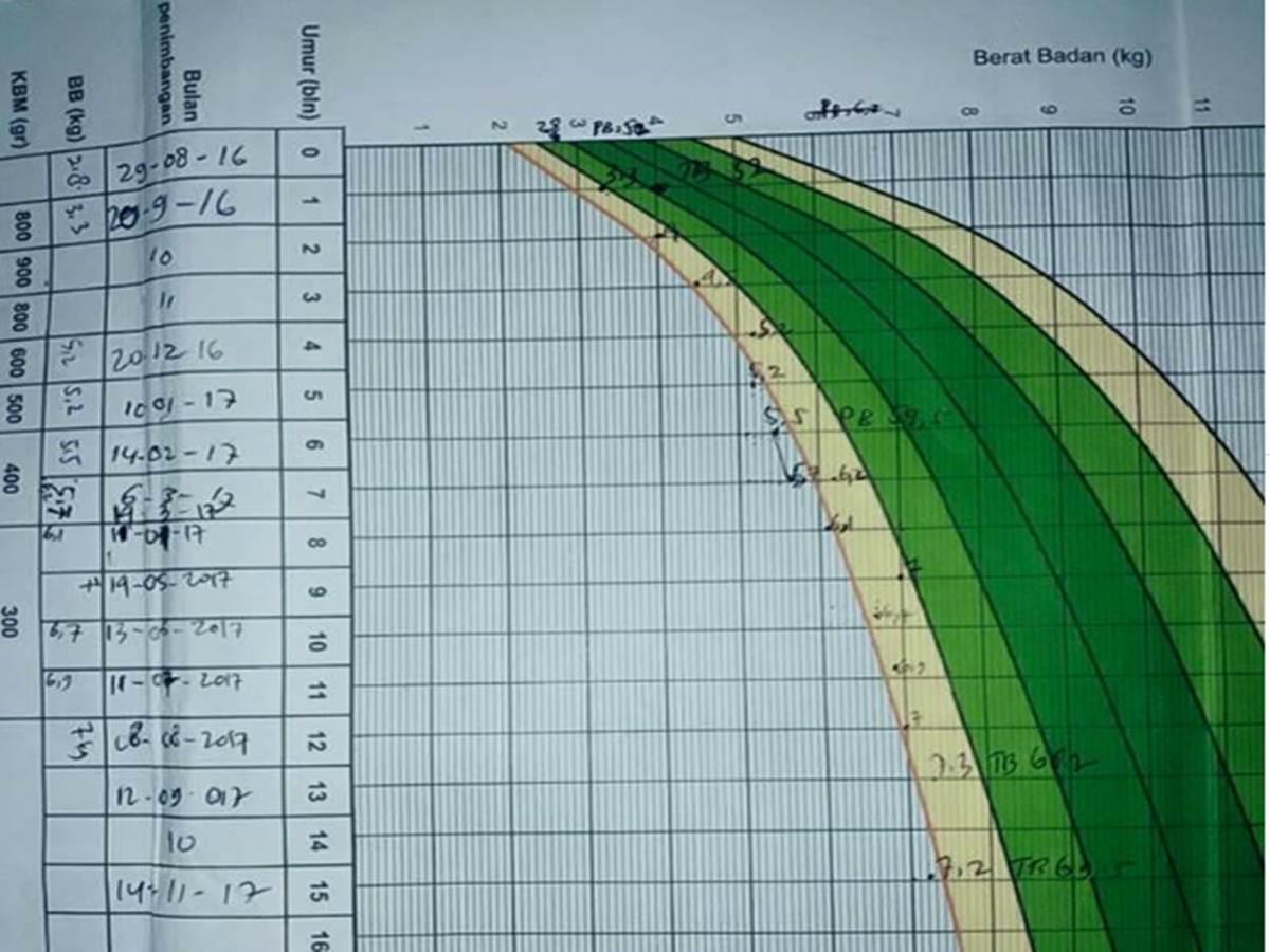 Grafik Berat Badan Bayi Ideal Usia 0 -12 Bulan