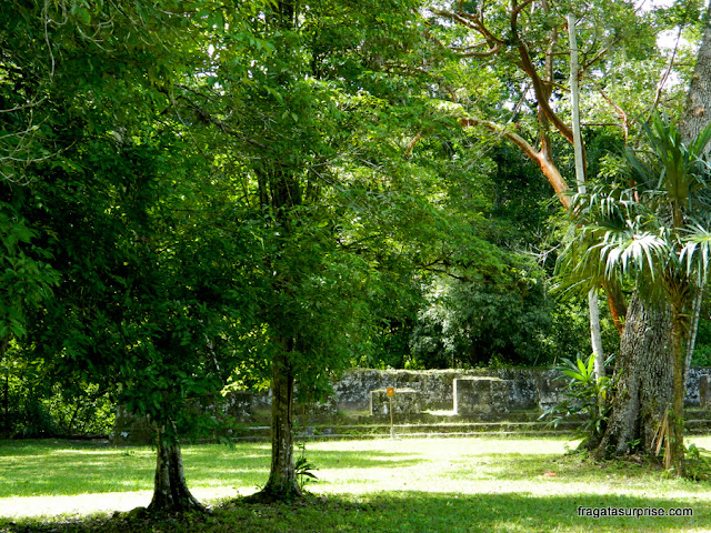 Edifício Sul no Complexo Q, em Tikal, Guatemala