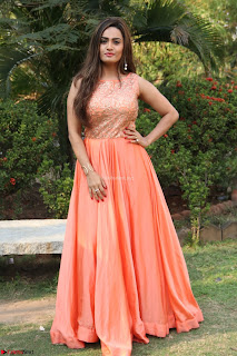 Actress Sakshi in beautiful orange Anarkali Dress Spicy Pics    041.jpg