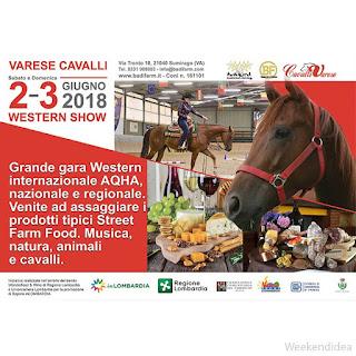 Western Show e Street Food 2-3 giugno Sumirago (Va)
