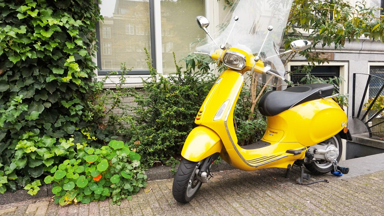 DSC09570 | Eline Van Dingenen