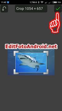 Edit Foto Up an Up 3