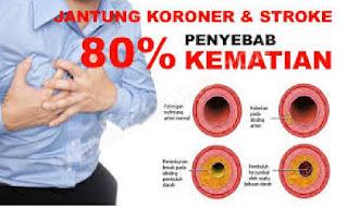 penyakit mematikan di Indonesia