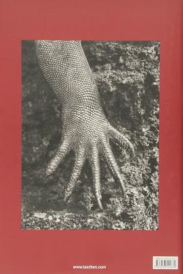 Livro Genesis, de Sebastião Salgado