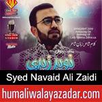 https://www.humaliwalyazadar.com/2019/02/syed-navaid-ali-zaidi-manqabat-2019.html