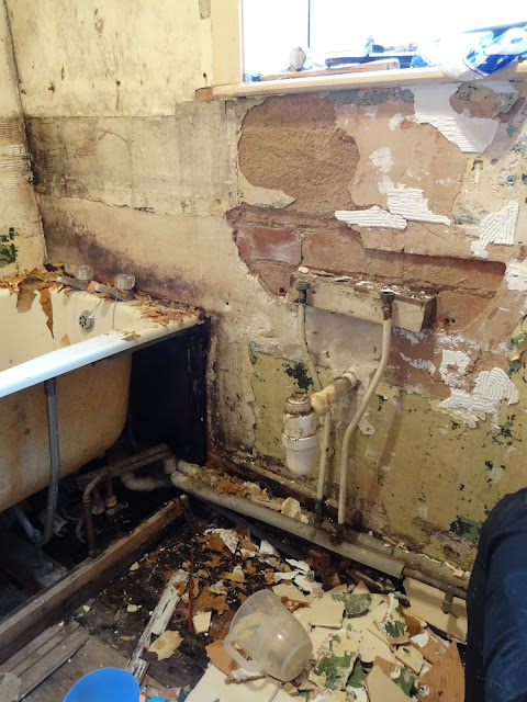 Damp and Mouldy Walls