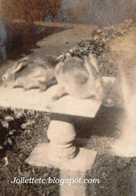 Bunnies Helen Killeen Parker https://jollettetc.blogspot.com