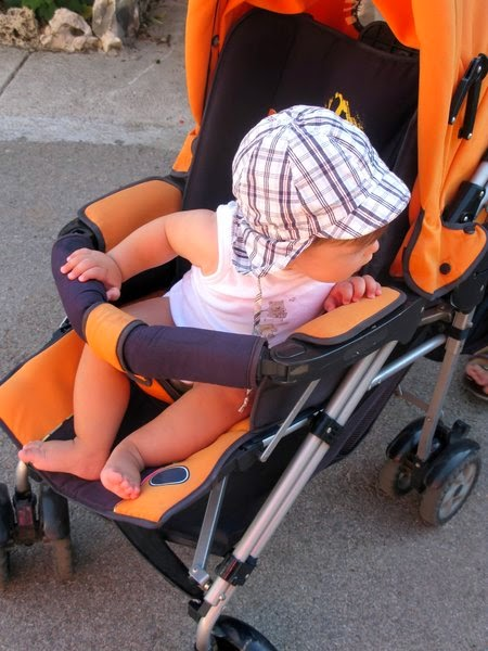 namc studying montessori absorbent mind ch 15 development imitation child in stroller
