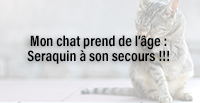 Mon chat prend de l'âge : Seraquin à son secours !!!