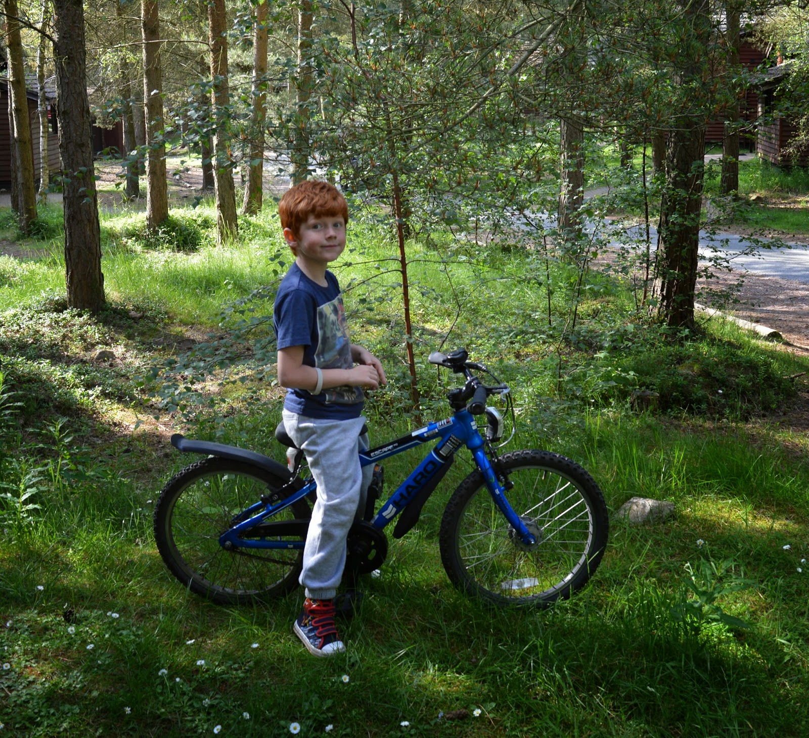 Three great ideas for a little adventure - cycling through the woods